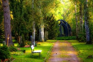 bench-carved-stones-cemetery-257360 (1)